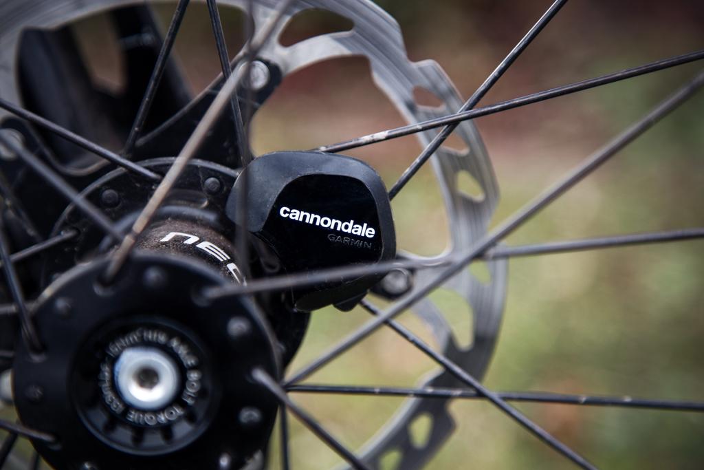 Cannondale Laufradsensor